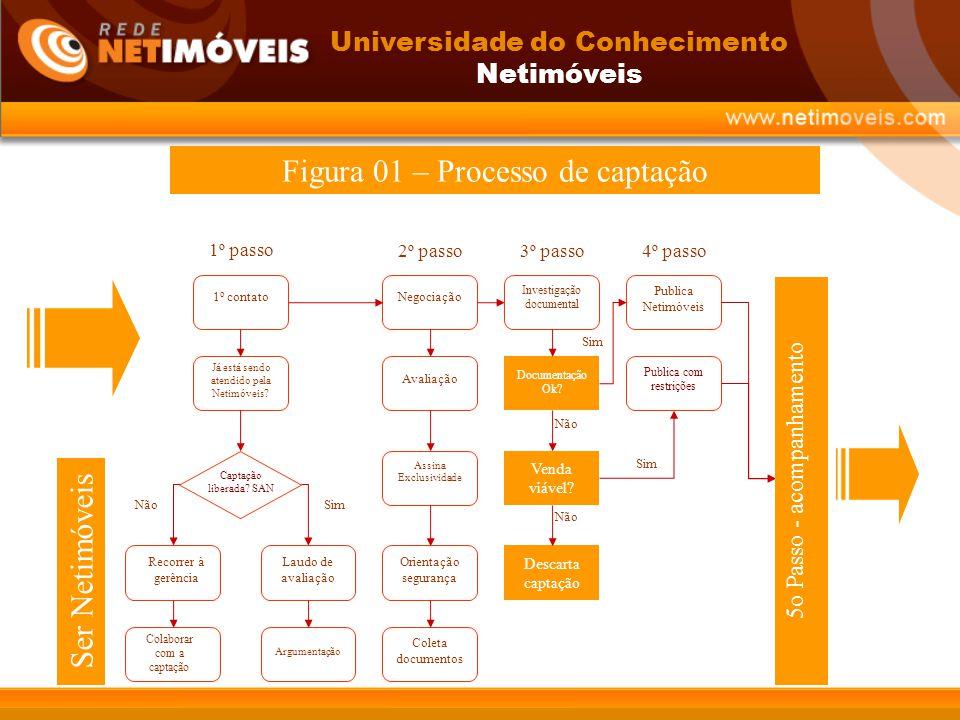 Figura 01 – Processo de captação