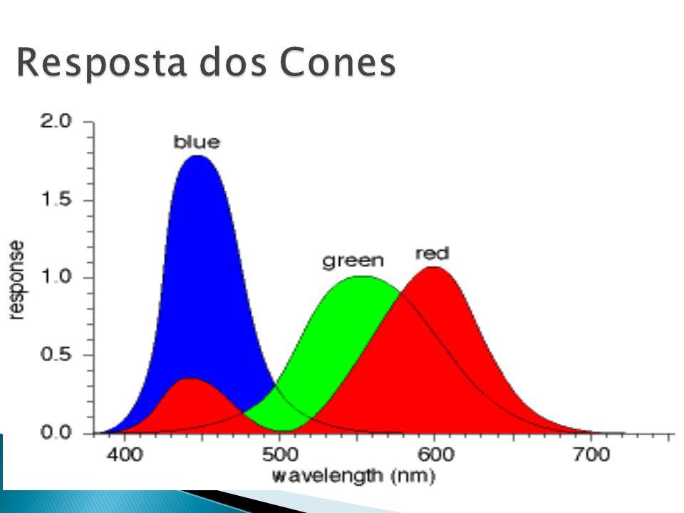 Resposta dos Cones