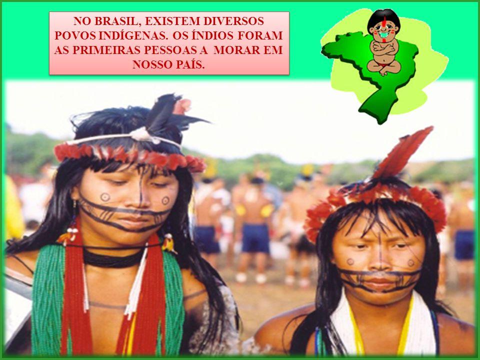 NO BRASIL, EXISTEM DIVERSOS POVOS INDÍGENAS