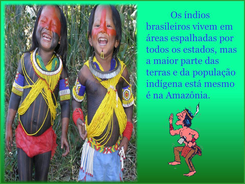 Os índios brasileiros vivem em áreas espalhadas por todos os estados, mas a maior parte das terras e da população indígena está mesmo é na Amazônia.