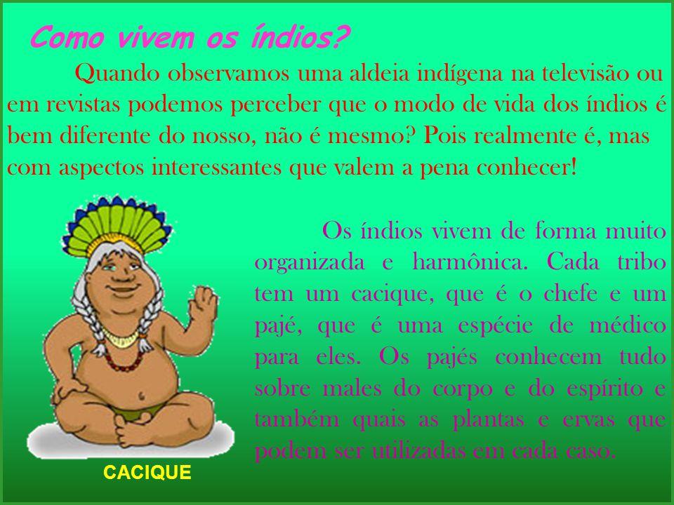 Como vivem os índios