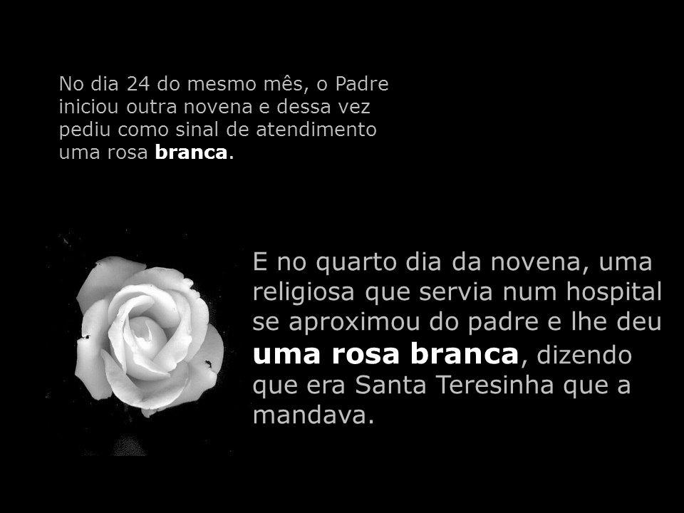 No dia 24 do mesmo mês, o Padre iniciou outra novena e dessa vez pediu como sinal de atendimento uma rosa branca.