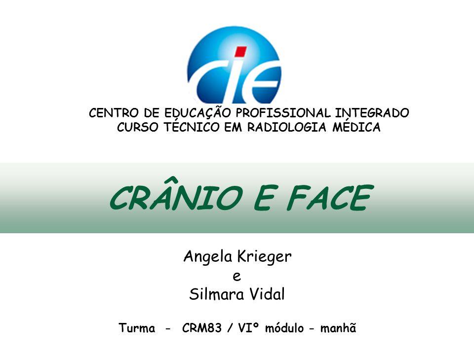 CRÂNIO E FACE Angela Krieger e Silmara Vidal
