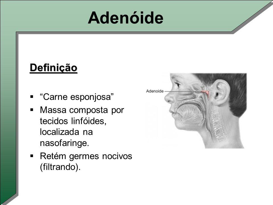 Adenóide Definição Carne esponjosa