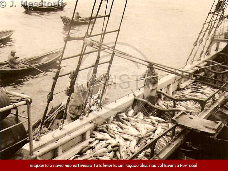 Enquanto o navio não estivesse totalmente carregado eles não voltavam a Portugal.