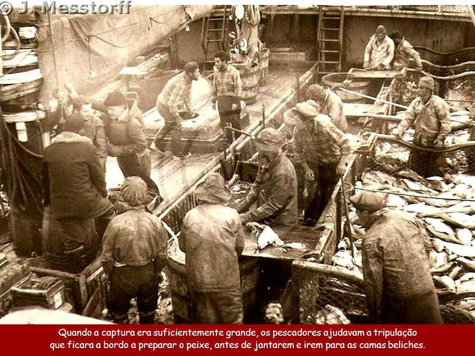 Quando a captura era suficientemente grande, os pescadores ajudavam a tripulação