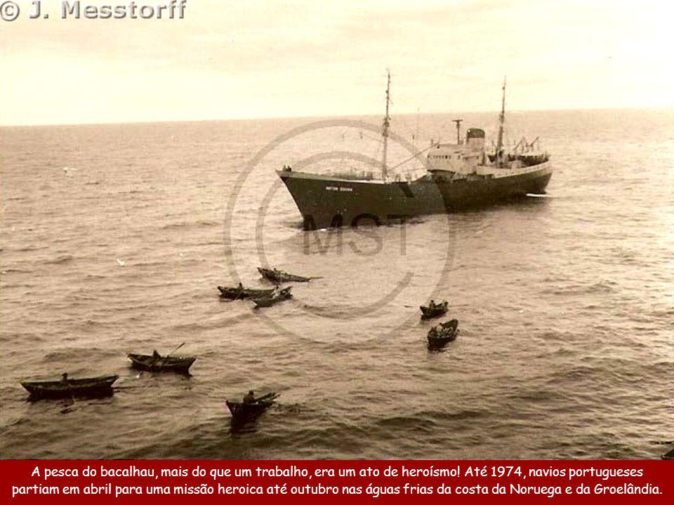 A pesca do bacalhau, mais do que um trabalho, era um ato de heroísmo