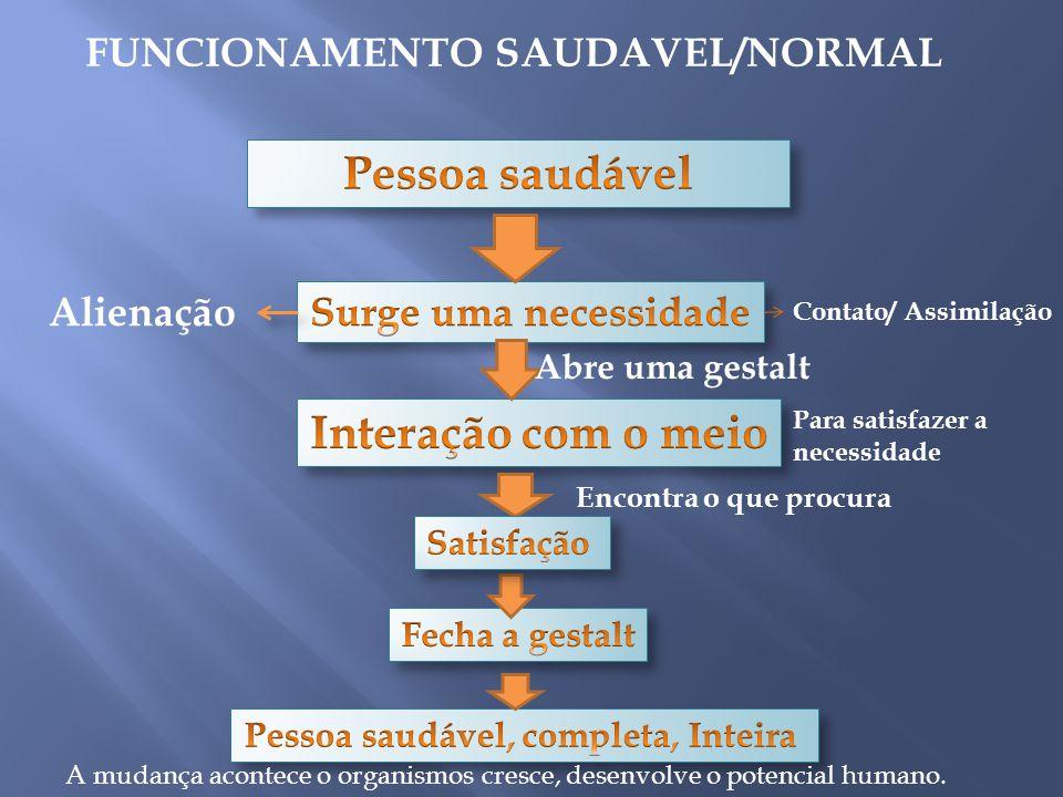 FUNCIONAMENTO SAUDAVEL/NORMAL Pessoa saudável, completa, Inteira