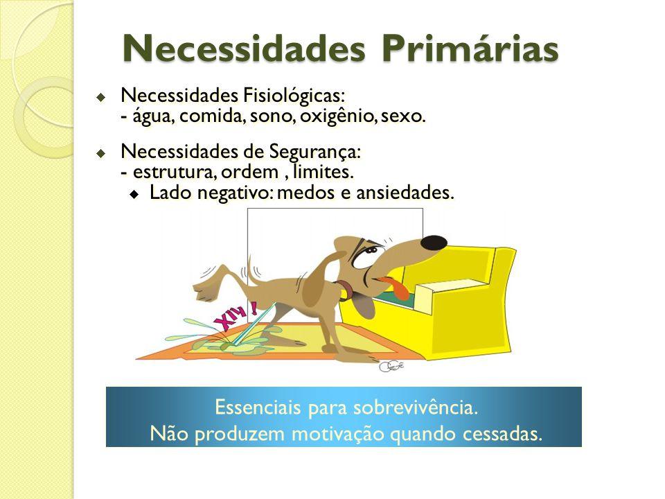 Necessidades Primárias