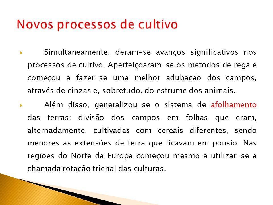 Novos processos de cultivo