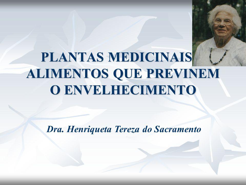 PLANTAS MEDICINAIS E ALIMENTOS QUE PREVINEM O ENVELHECIMENTO