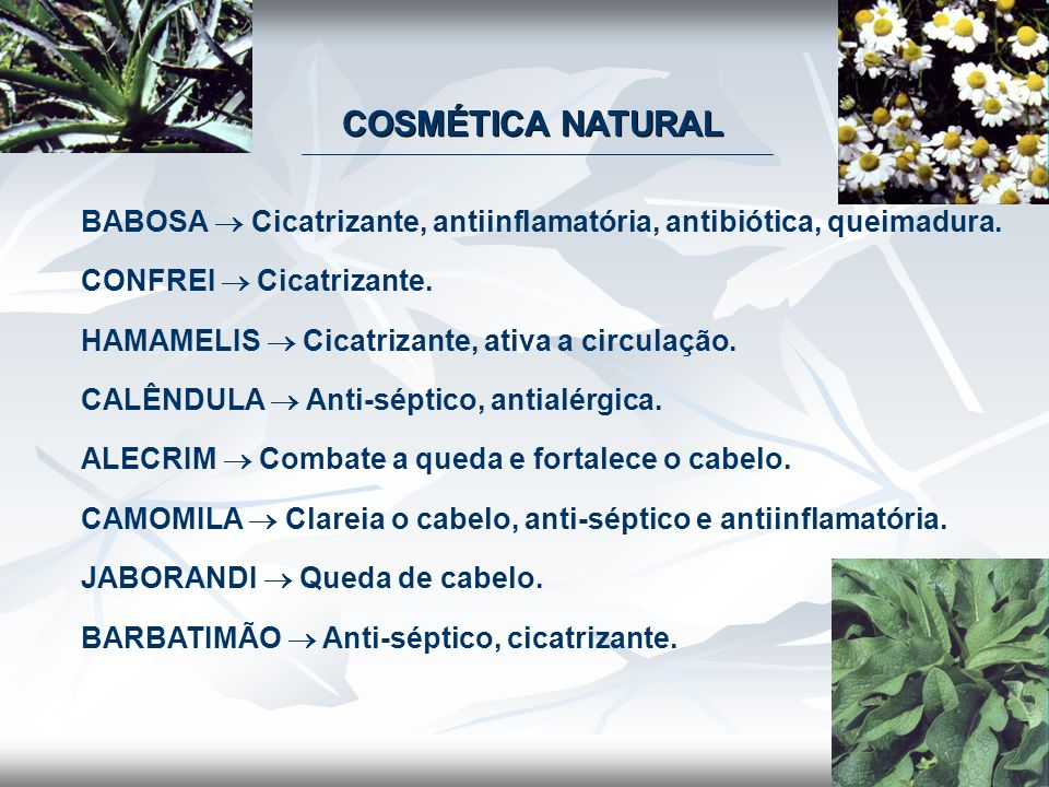 COSMÉTICA NATURAL BABOSA  Cicatrizante, antiinflamatória, antibiótica, queimadura. CONFREI  Cicatrizante.
