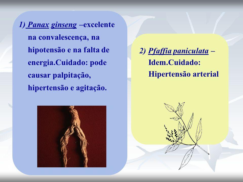 1) Panax ginseng –excelente na convalescença, na hipotensão e na falta de energia.Cuidado: pode causar palpitação, hipertensão e agitação.