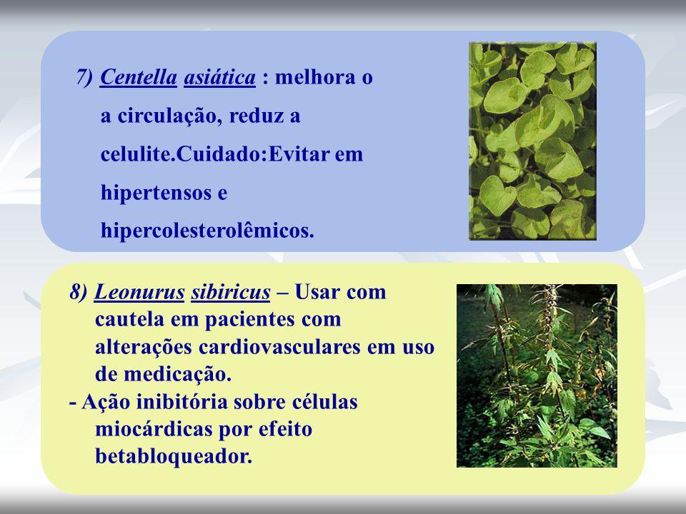 7) Centella asiática : melhora o a circulação, reduz a celulite
