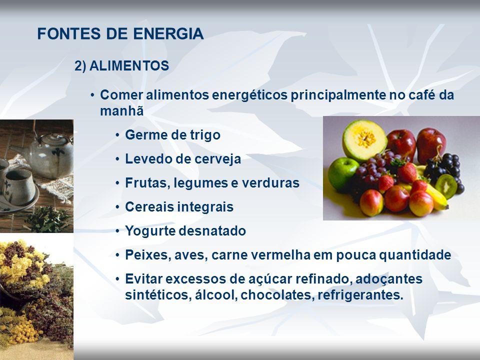 FONTES DE ENERGIA 2) ALIMENTOS