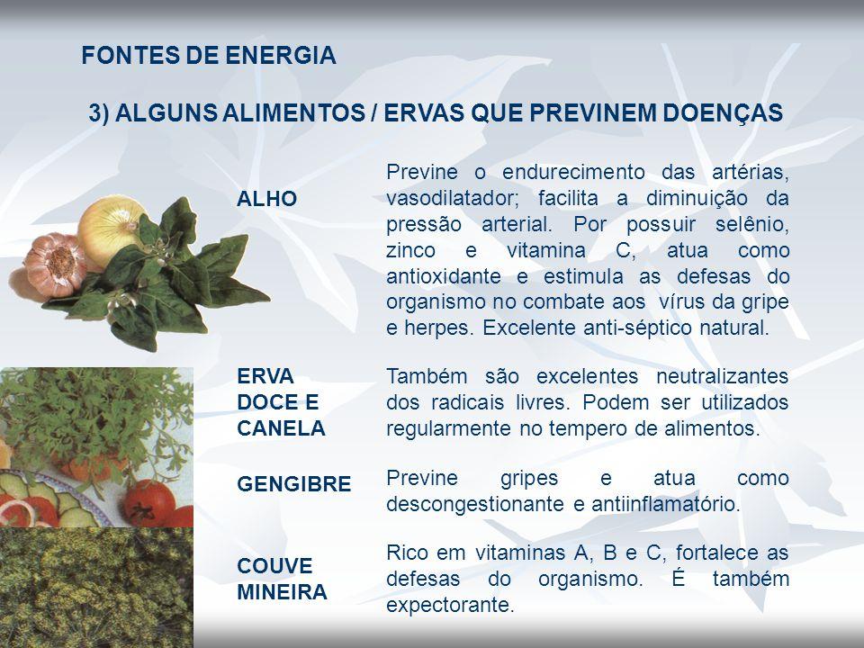 3) ALGUNS ALIMENTOS / ERVAS QUE PREVINEM DOENÇAS