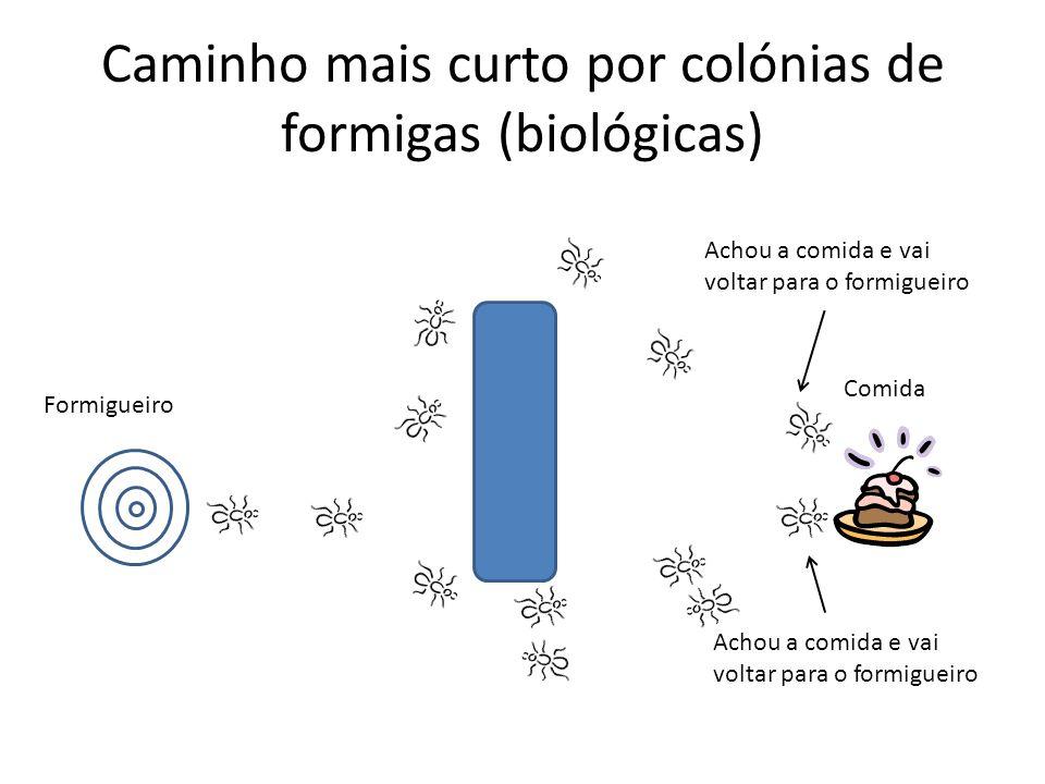 Caminho mais curto por colónias de formigas (biológicas)