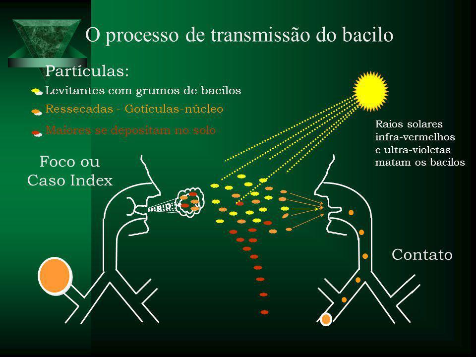 O processo de transmissão do bacilo