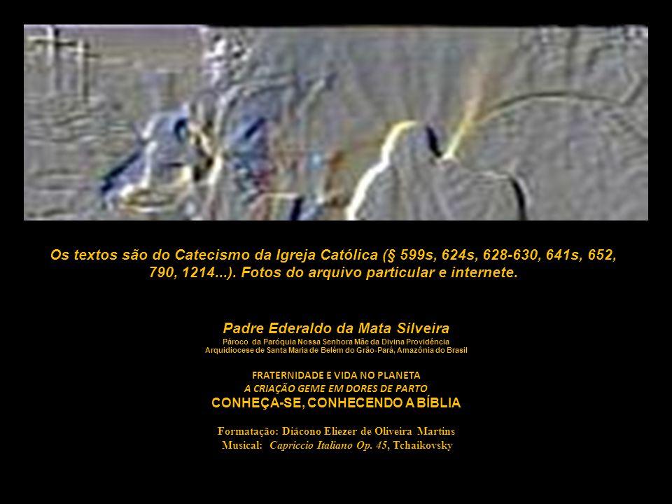 Os textos são do Catecismo da Igreja Católica (§ 599s, 624s, 628-630, 641s, 652, 790, 1214...). Fotos do arquivo particular e internete.