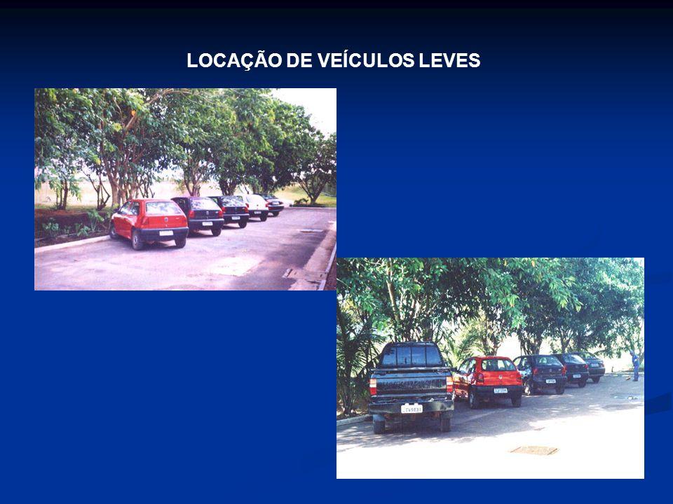 LOCAÇÃO DE VEÍCULOS LEVES