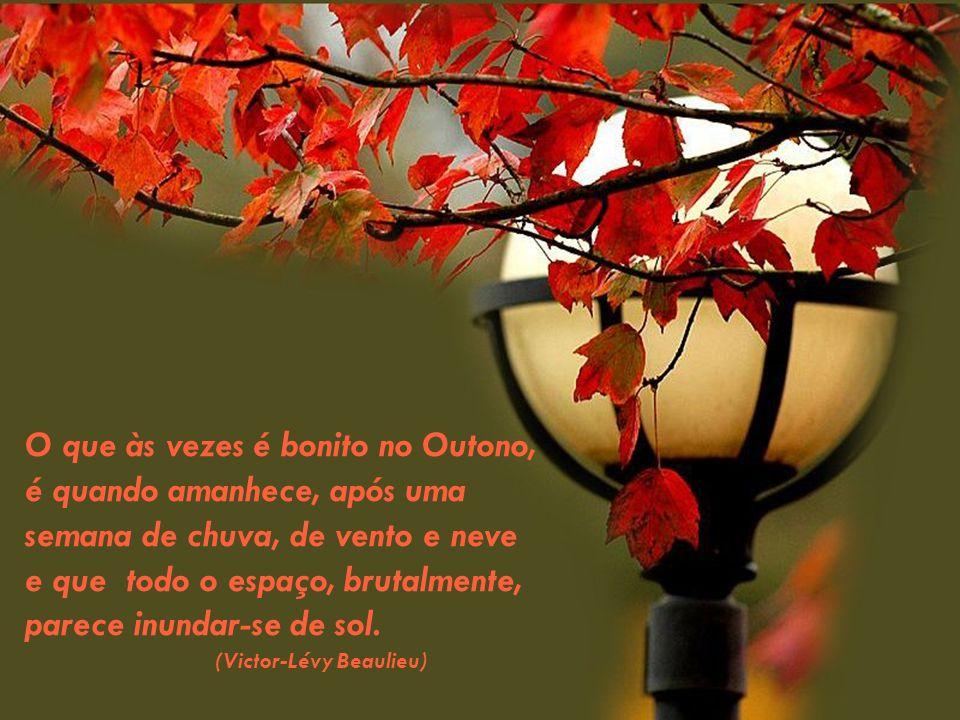 O que às vezes é bonito no Outono, é quando amanhece, após uma