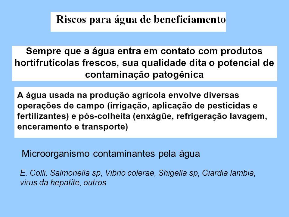 Microorganismo contaminantes pela água