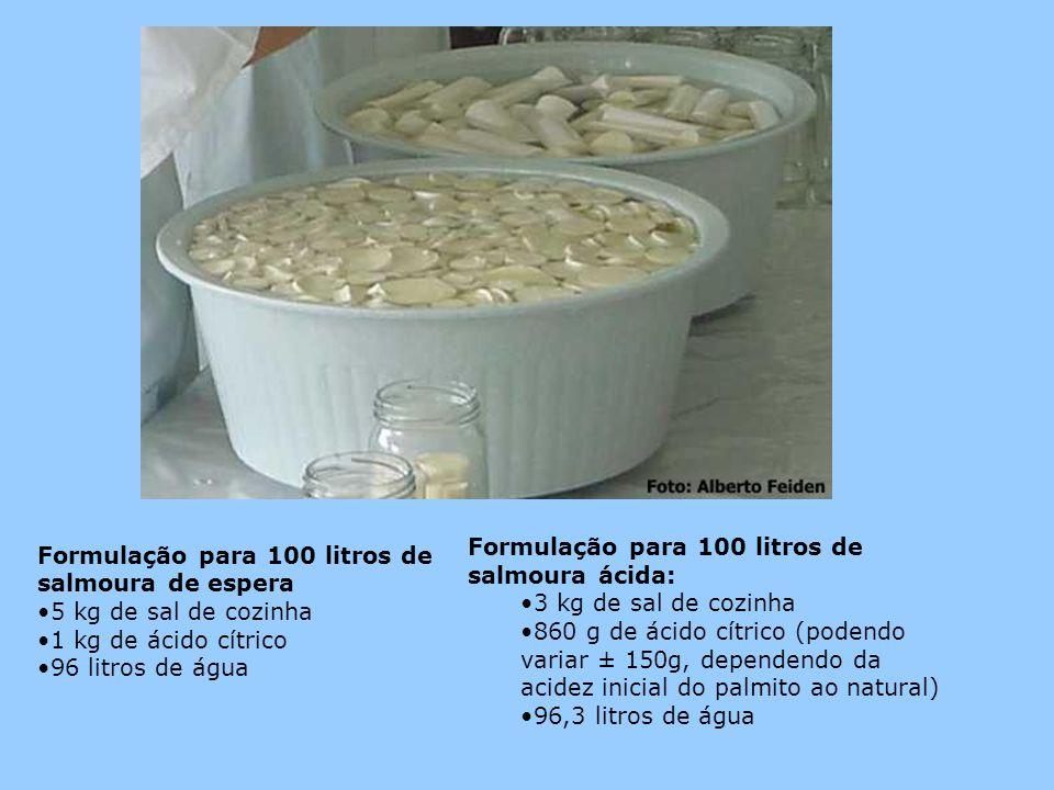 Formulação para 100 litros de salmoura ácida: