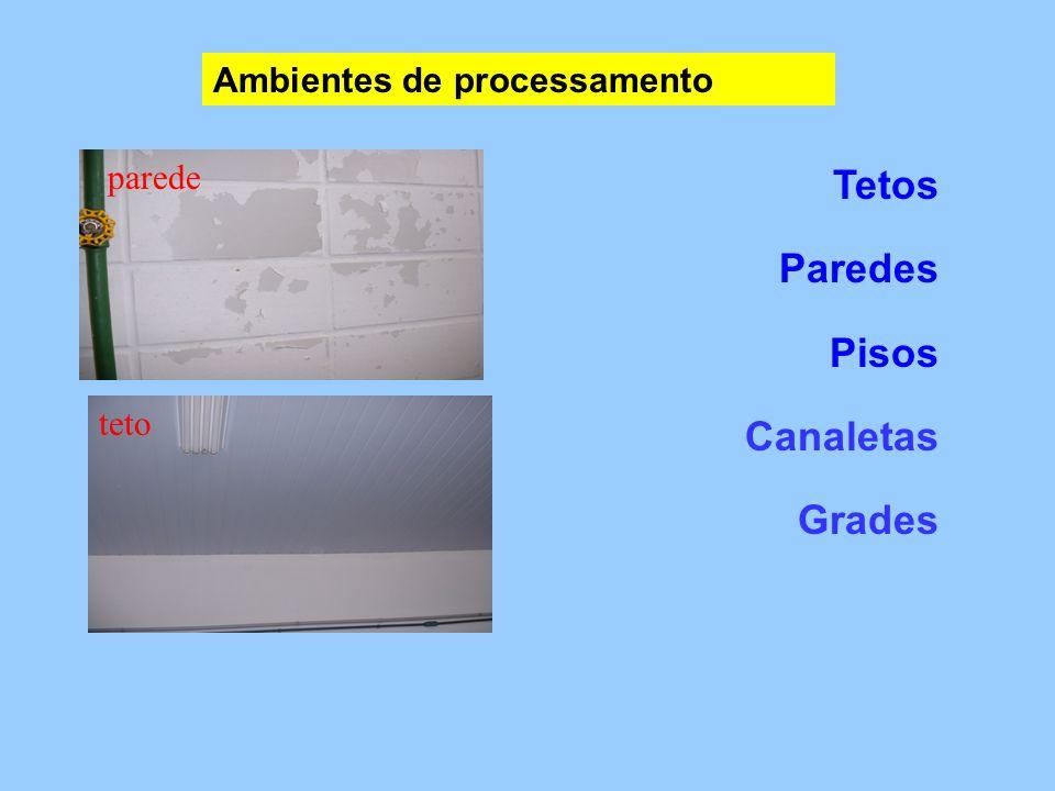 Tetos Paredes Pisos Canaletas Grades Ambientes de processamento parede