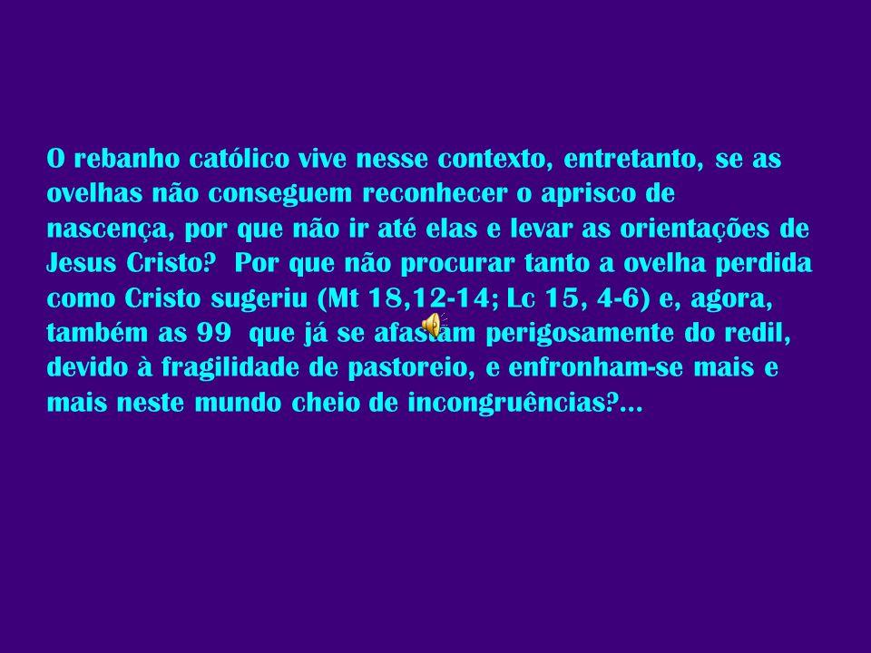O rebanho católico vive nesse contexto, entretanto, se as ovelhas não conseguem reconhecer o aprisco de nascença, por que não ir até elas e levar as orientações de Jesus Cristo.