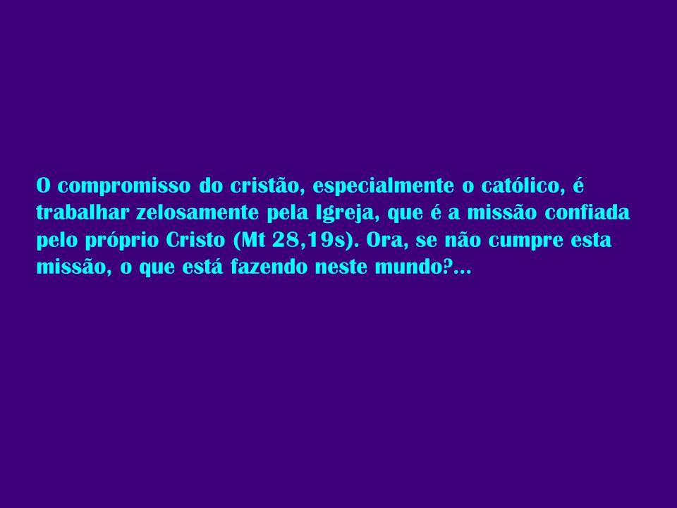 O compromisso do cristão, especialmente o católico, é trabalhar zelosamente pela Igreja, que é a missão confiada pelo próprio Cristo (Mt 28,19s).