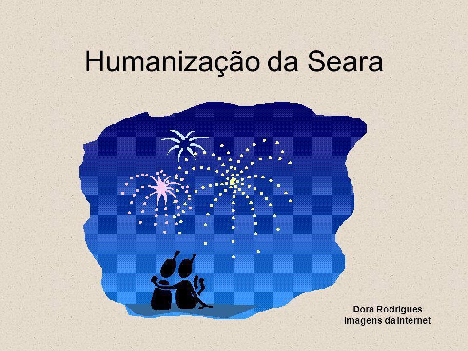 Humanização da Seara Dora Rodrigues Imagens da Internet