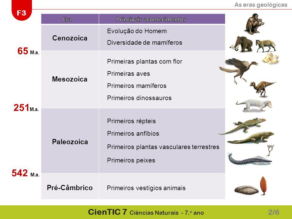 65 M.a. 251M.a. 542 M.a. 2/6 Cenozoica Mesozoica Paleozoica
