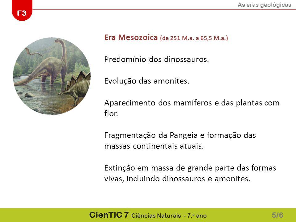 Era Mesozoica (de 251 M.a. a 65,5 M.a.) Predomínio dos dinossauros.