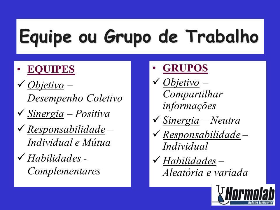 Equipe ou Grupo de Trabalho
