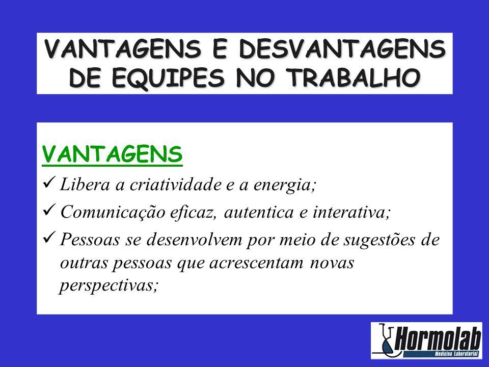 VANTAGENS E DESVANTAGENS DE EQUIPES NO TRABALHO
