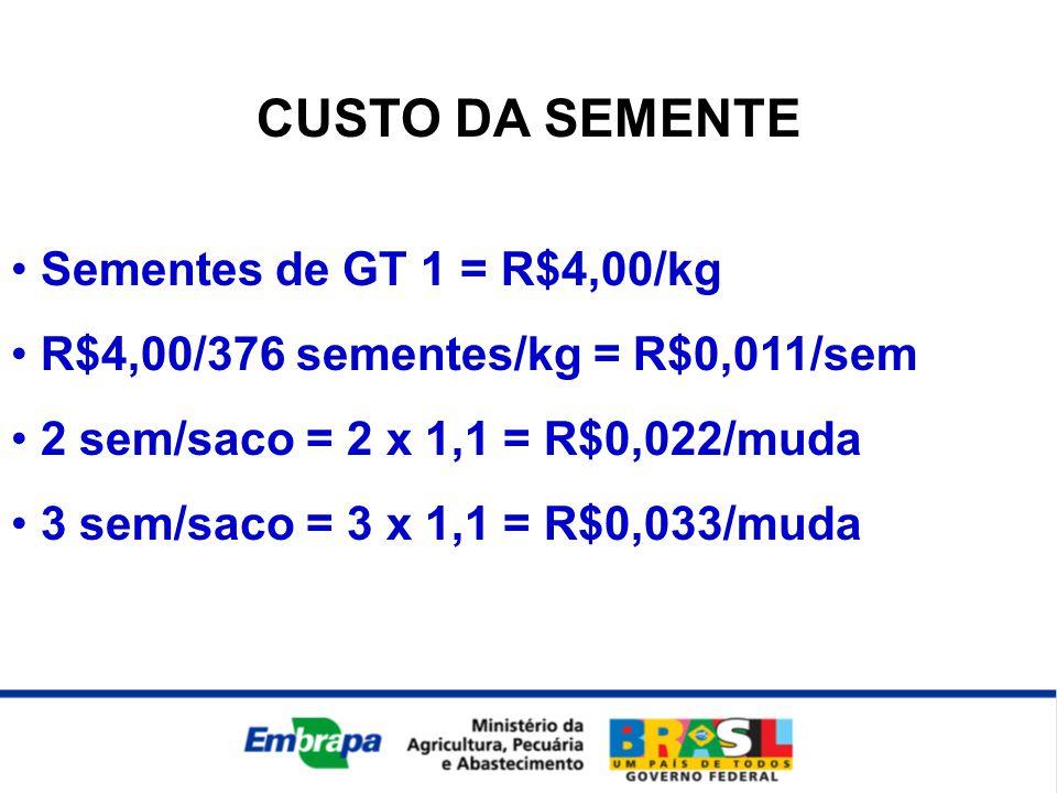 CUSTO DA SEMENTE Sementes de GT 1 = R$4,00/kg