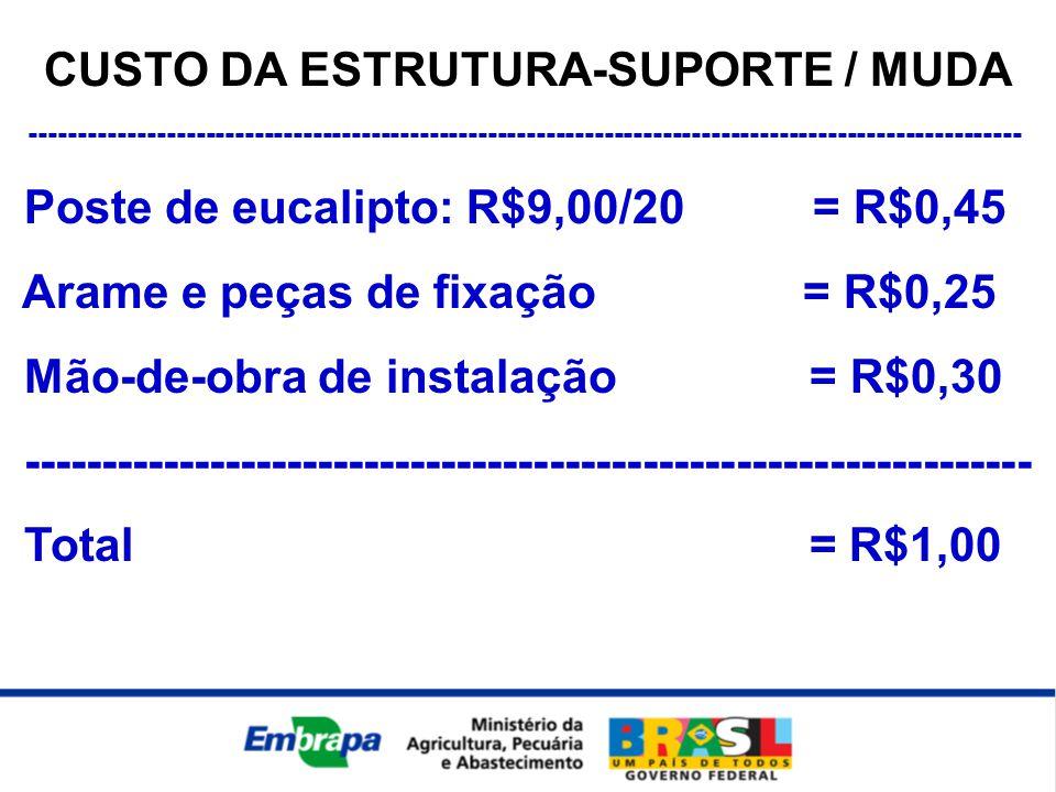 CUSTO DA ESTRUTURA-SUPORTE / MUDA