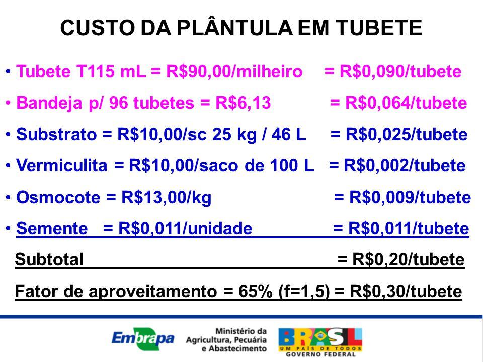 CUSTO DA PLÂNTULA EM TUBETE