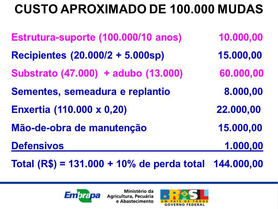 CUSTO APROXIMADO DE 100.000 MUDAS