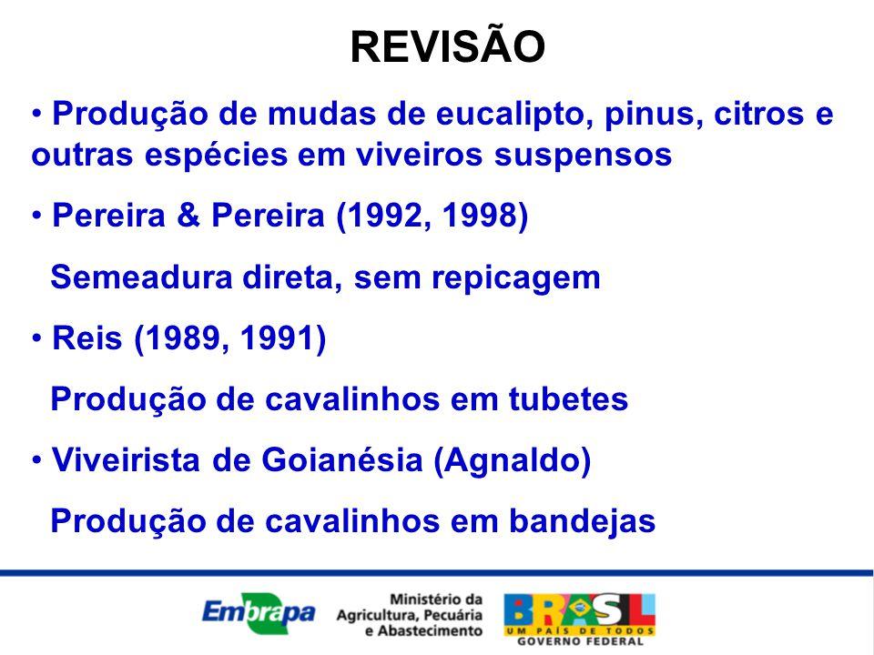 REVISÃO Produção de mudas de eucalipto, pinus, citros e outras espécies em viveiros suspensos. Pereira & Pereira (1992, 1998)