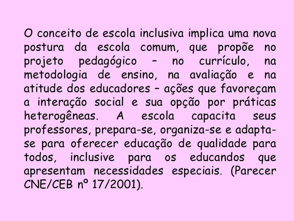 O conceito de escola inclusiva implica uma nova postura da escola comum, que propõe no projeto pedagógico – no currículo, na metodologia de ensino, na avaliação e na atitude dos educadores – ações que favoreçam a interação social e sua opção por práticas heterogêneas.