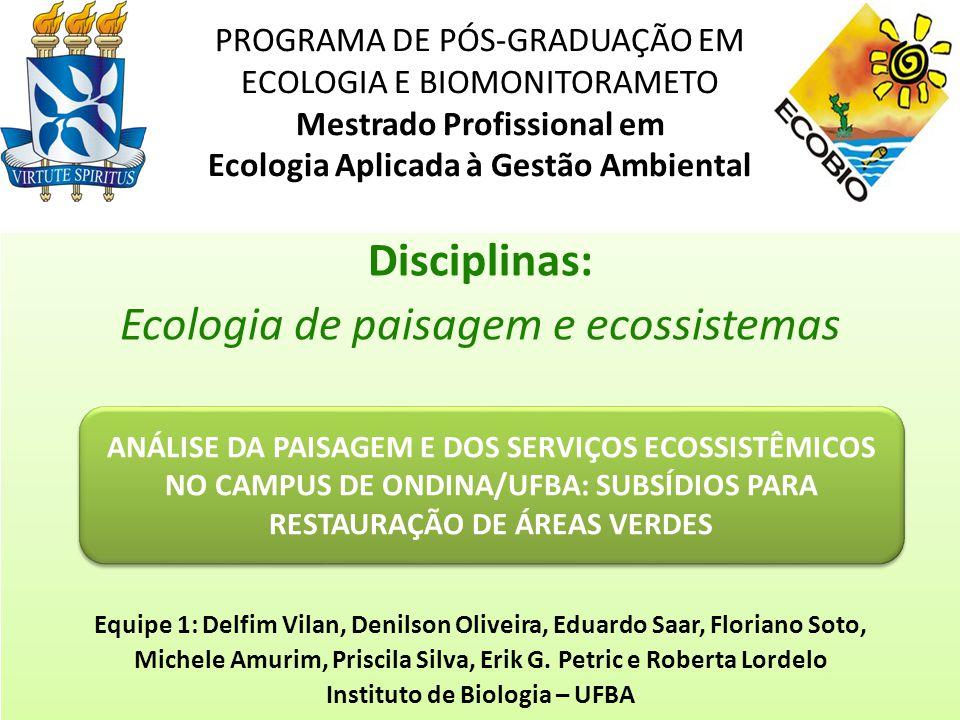 Ecologia de paisagem e ecossistemas