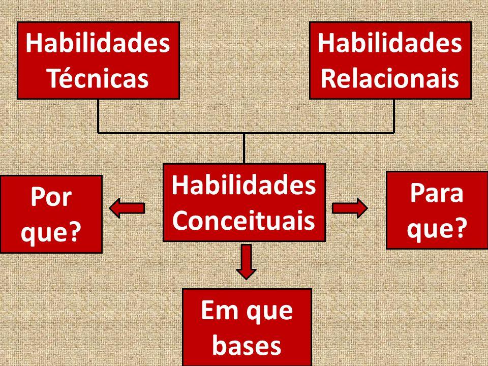 Habilidades Relacionais Habilidades Conceituais