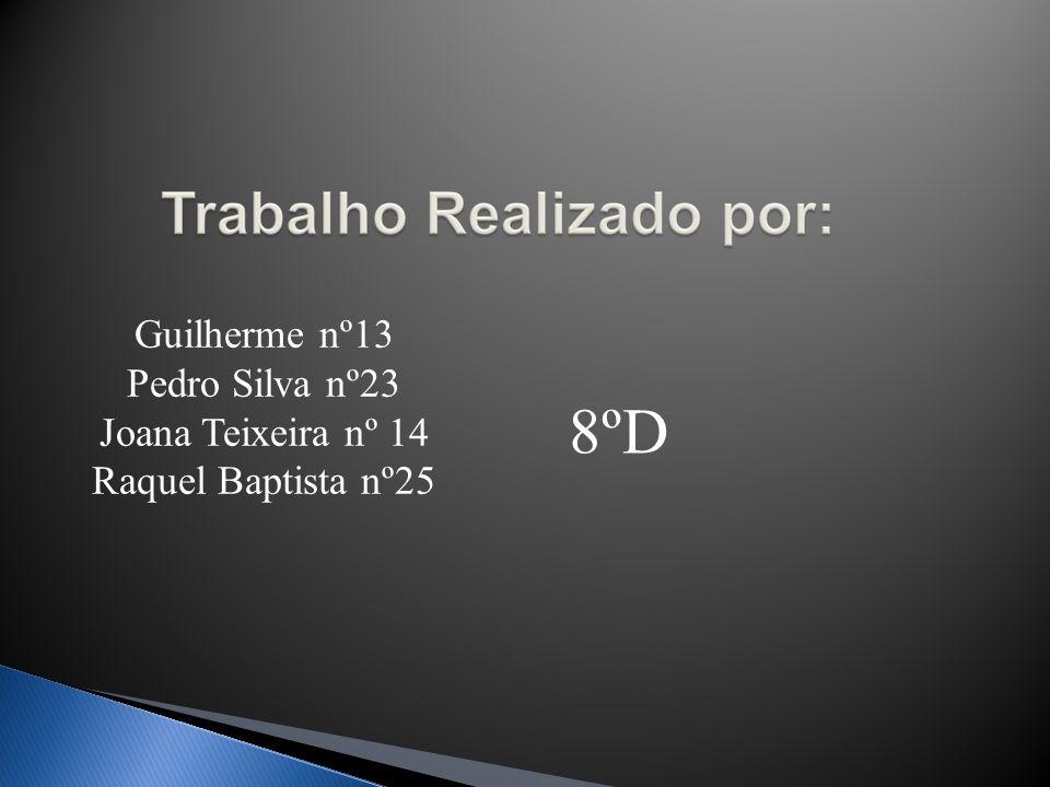 8ºD Guilherme nº13 Pedro Silva nº23 Joana Teixeira nº 14