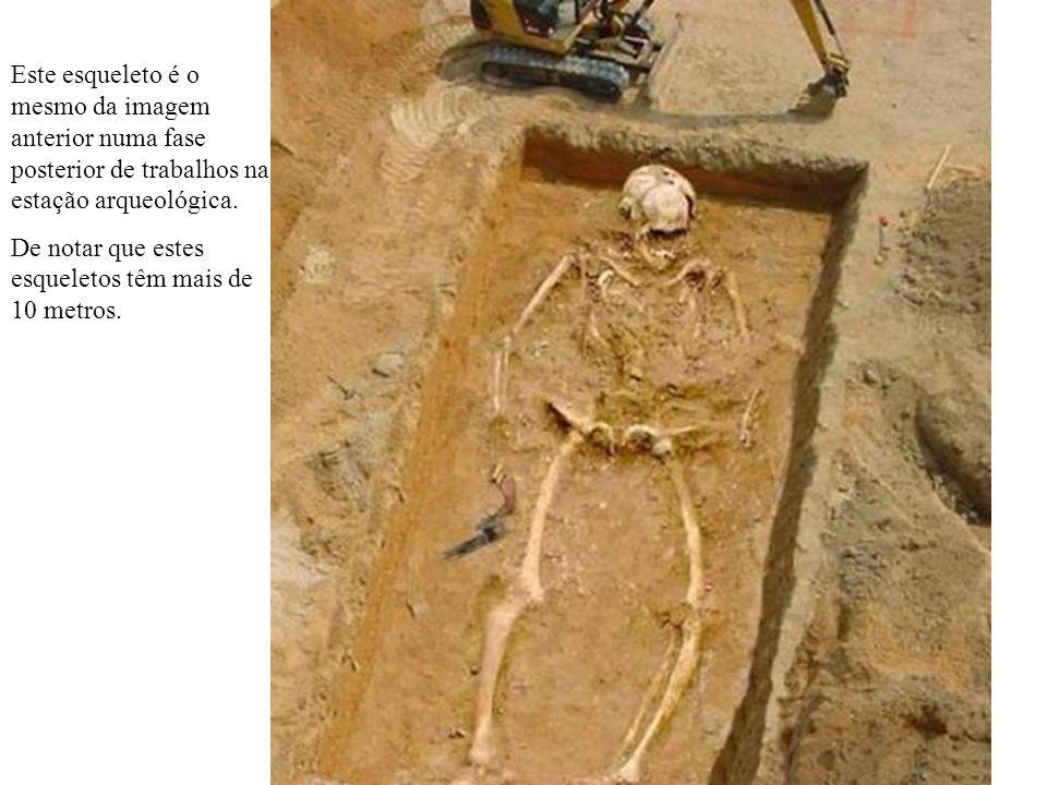 Este esqueleto é o mesmo da imagem anterior numa fase posterior de trabalhos na estação arqueológica.