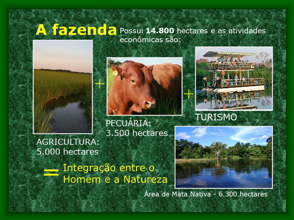 = + + A fazenda Integração entre o Homem e a Natureza TURISMO