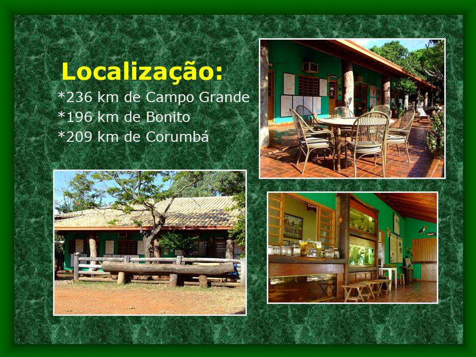 Localização: *236 km de Campo Grande *196 km de Bonito