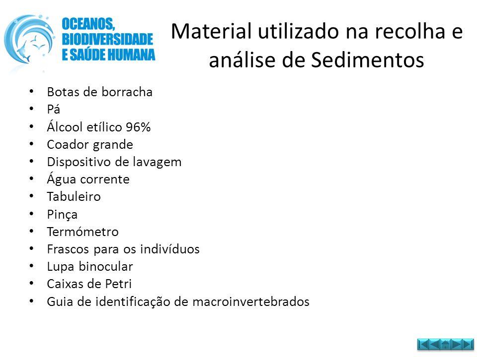 Material utilizado na recolha e análise de Sedimentos