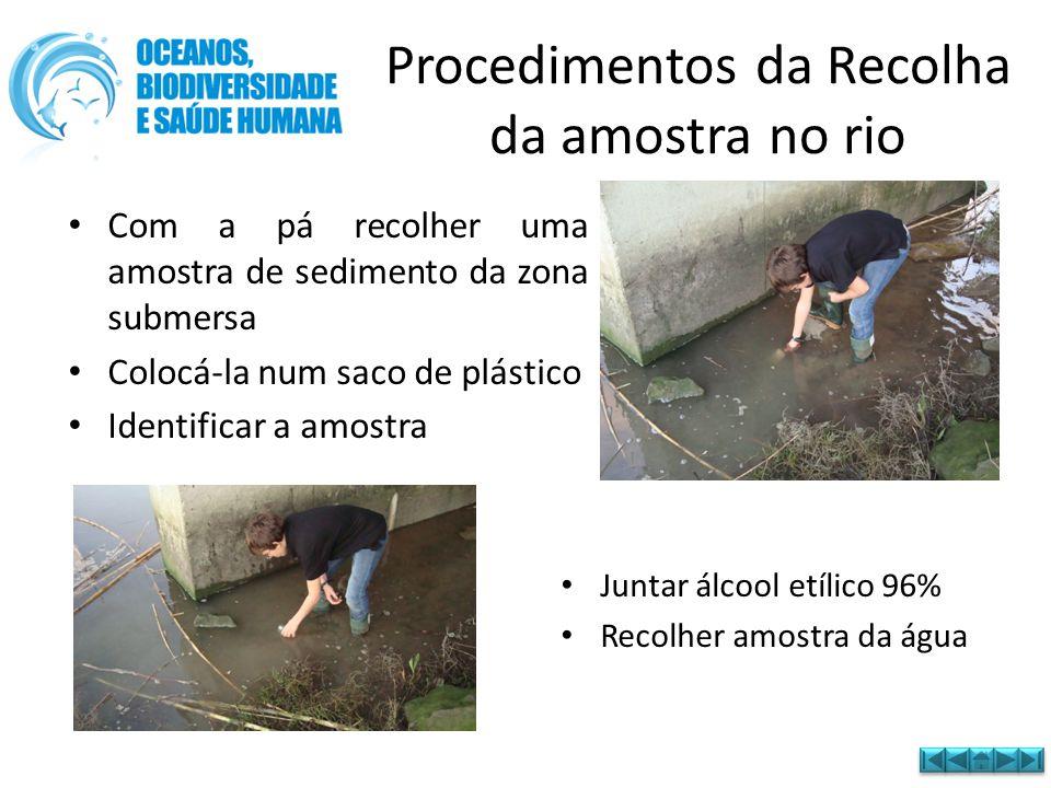 Procedimentos da Recolha da amostra no rio