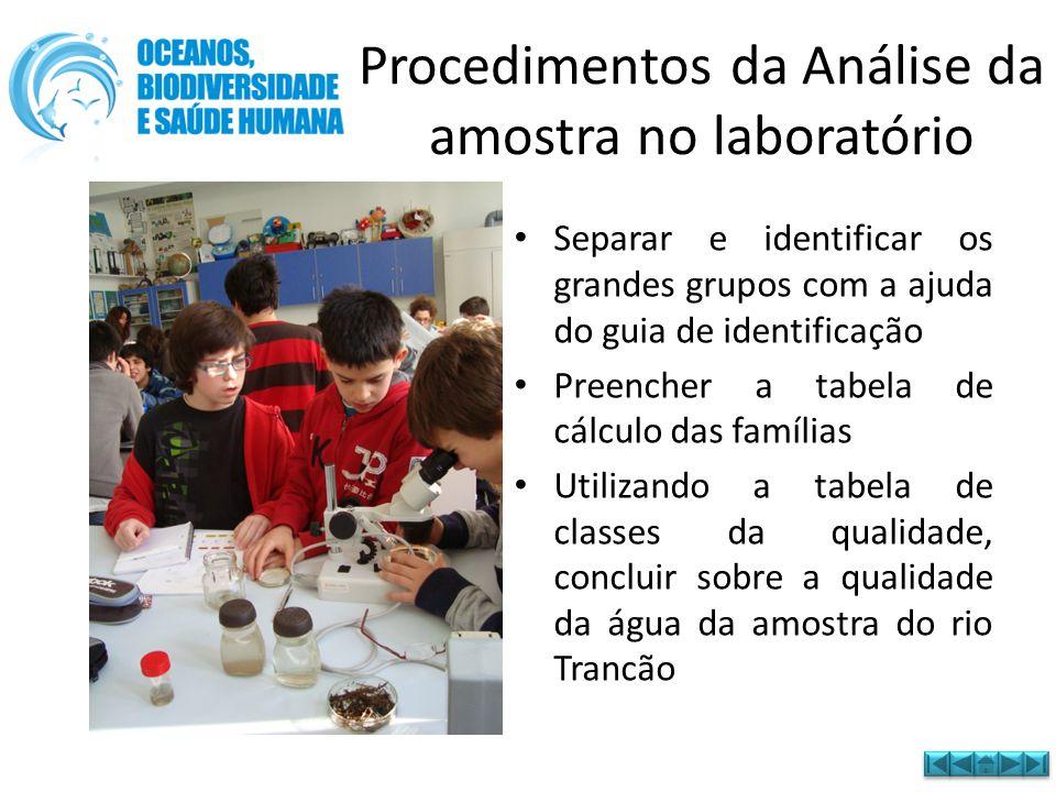 Procedimentos da Análise da amostra no laboratório